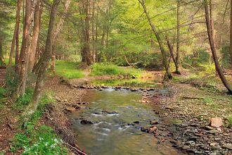Stock Photo-Hyner Run State Park